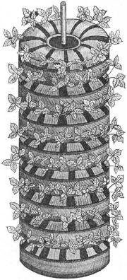 Схема жаккард клубника