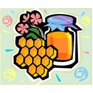 Мёд полезные свойства Фото 1