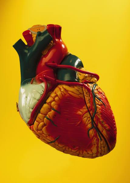 Сердечная недостаточность симптомы Фото 1