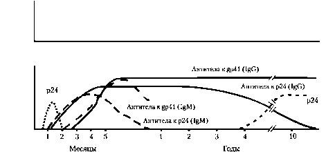 Антиген р24 в сыворотке крови Фото 1