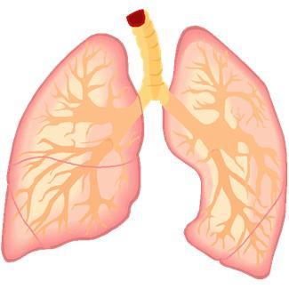Рак легких симптомы Фото 1